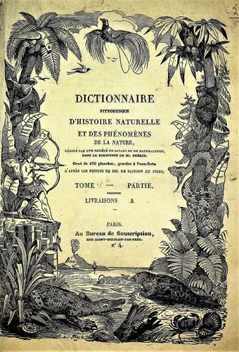 dictionnaire penetrate