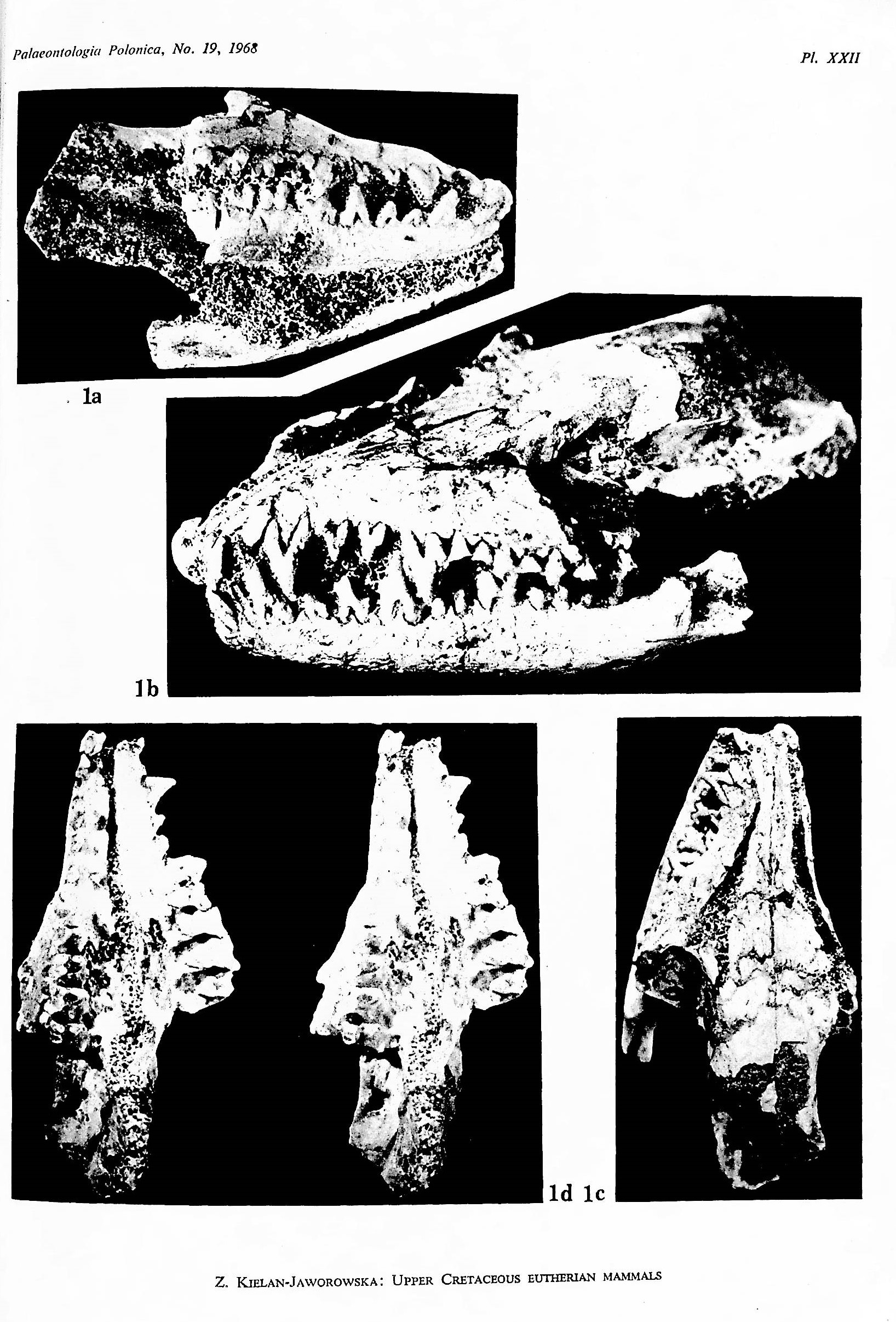 Image for Results of the Polish-Mongolian Palaeontological Expeditions. Parts I-X (in 15 parts), Zofia Kielan-Jaworowska, editor